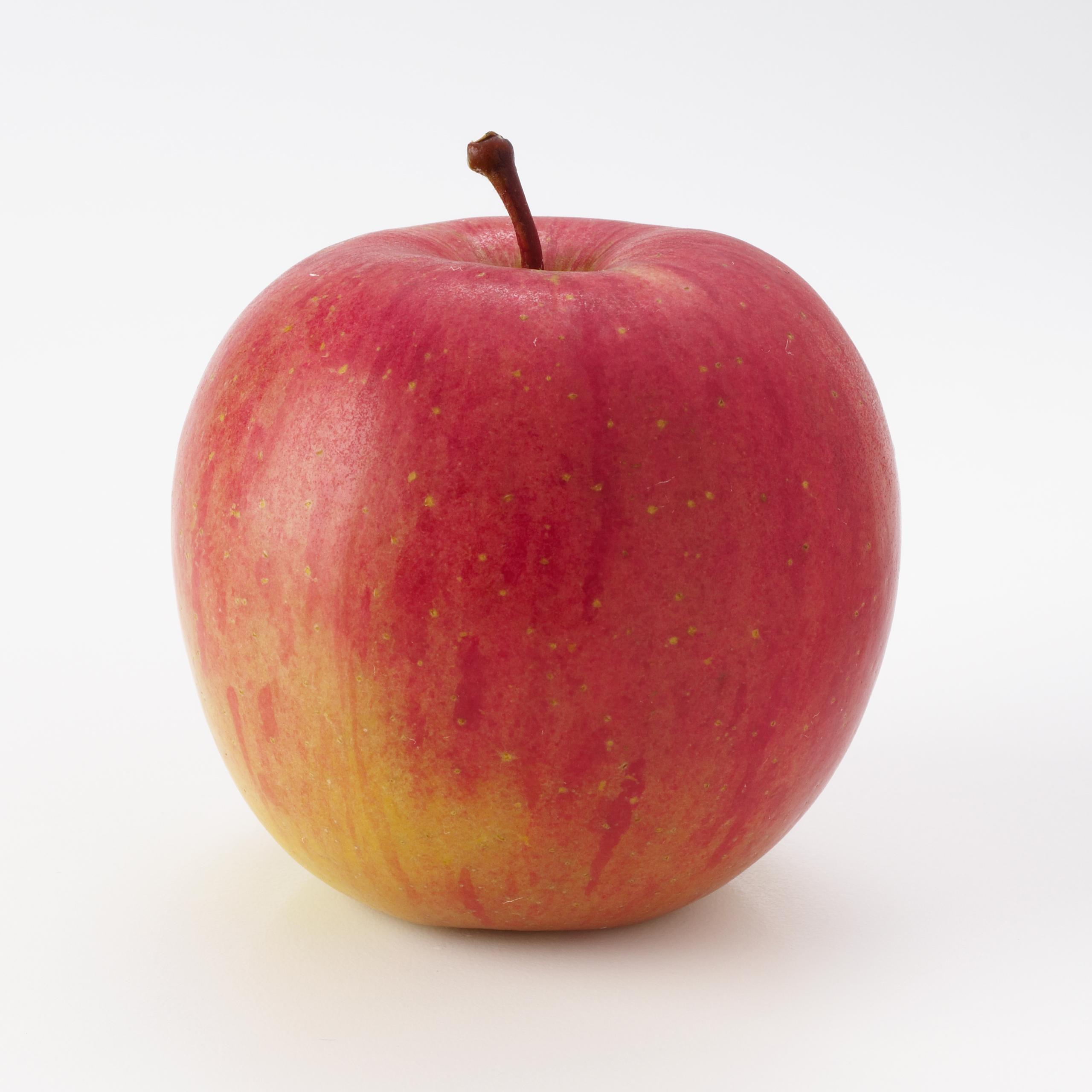 fuji apples louisiana fresh