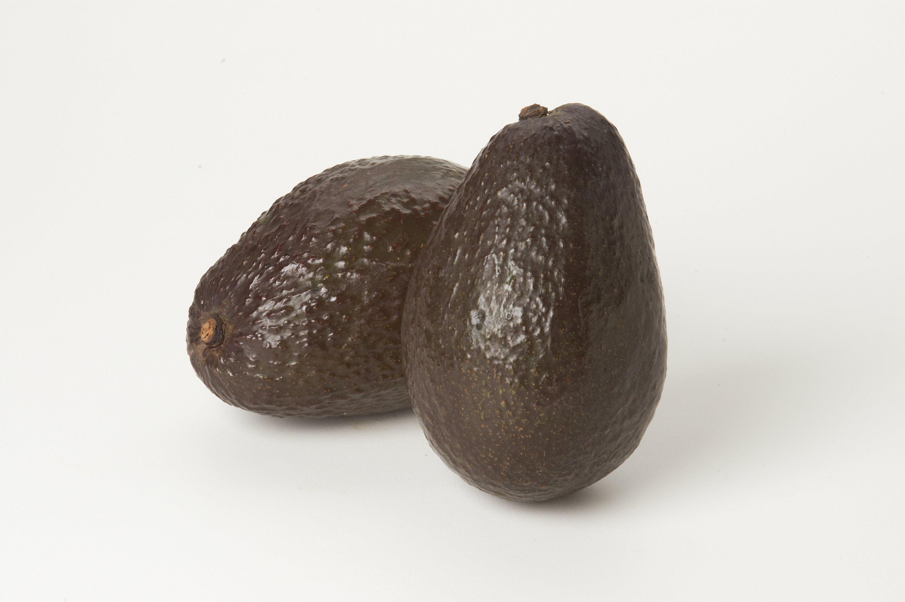 Avocados Haas
