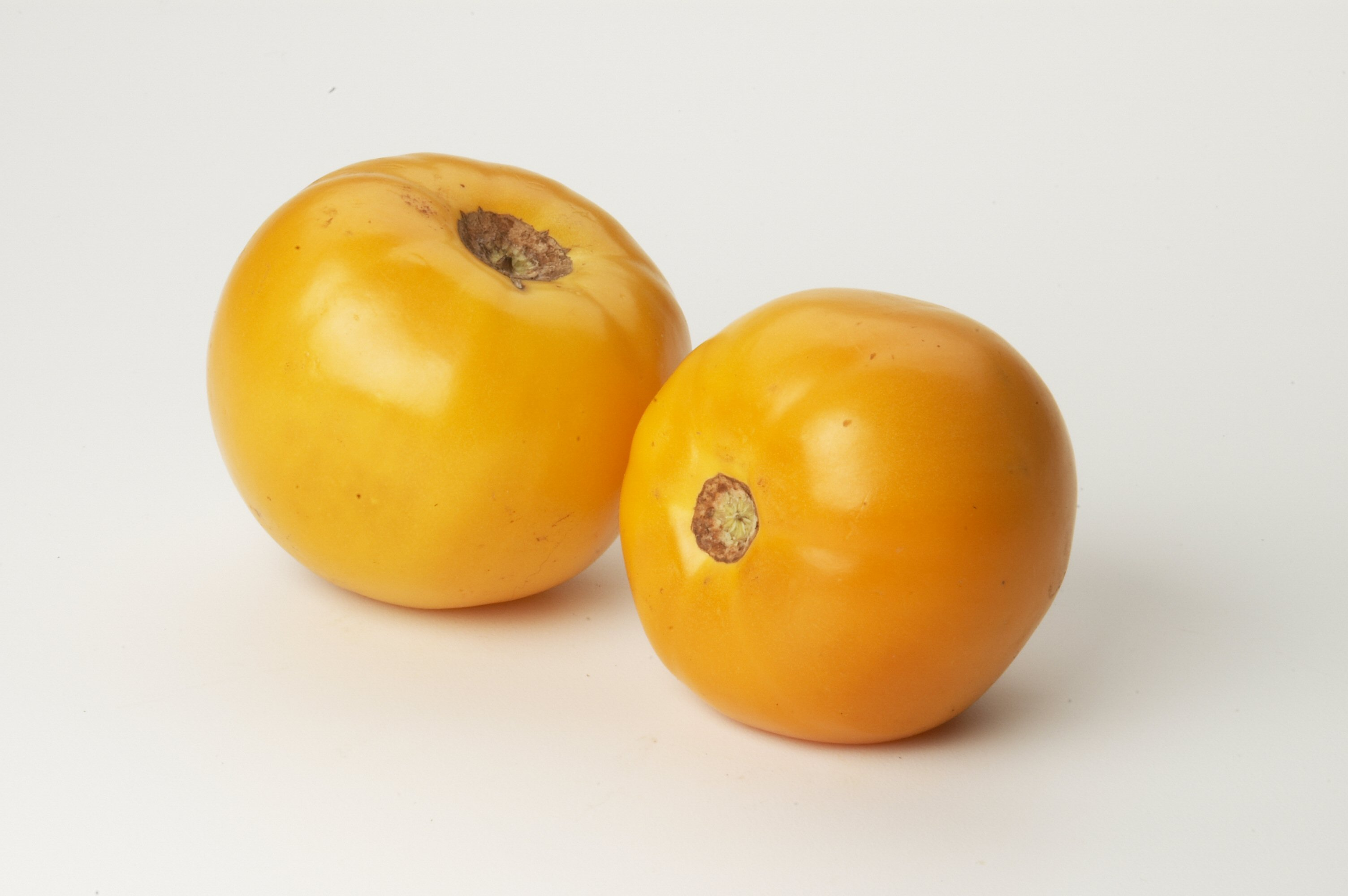 Tomato Yellow